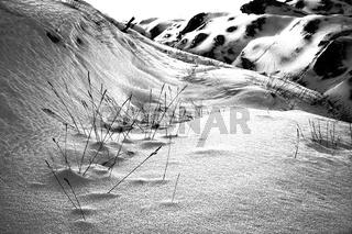 Wild, untouched winter landscape