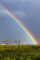 rainbow in gray sky over city and green trees