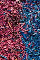 Textured background decorative colored sawdust for finishing flowerbeds in the winter season. red blue sawdust