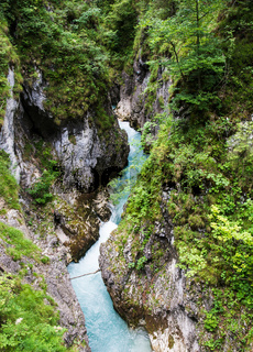 River flowing through the Leutasch Gorge