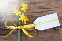 Sunny Spring Narcissus, Label, Gartenzeit Means Garden Time
