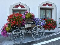 Blumenschmuck vor Hotel Sassongher in Corvara; Dolomiten; Suedtirol