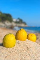 Lemons at the beach
