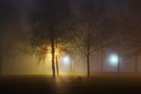 Foggy Mysterious Night