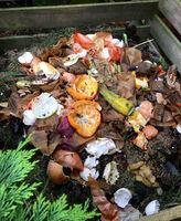 Komposthaufen mit Biomüll im Garten