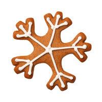 Gingerbread Snowflake Isolated on White Background