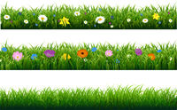Grass Border With Flower