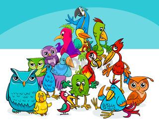 colorful birds group cartoon illustration