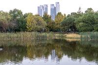 seoul forest park