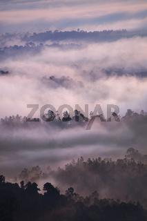 Bukit Panorama, Sungai Lembing, Malaysia, Asia