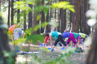 Group of young people practising yoga outdoors.