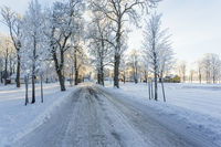 Winter landscape with a road through a tree avenue