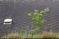 Ruinöses Hausdach