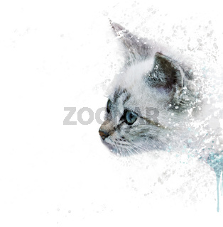 White Kitten portrait watercolor