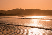surfer goes into ocean - silhouette of person with surfboard at beach during sunset