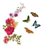 Butterflies and flowers arrangement