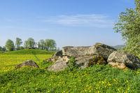 Passage grave in a rural summer landscape
