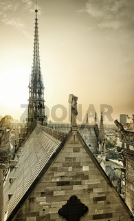 Notre Dame aerial view