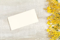 Mimosa and yellow daffodils on a light wooden surface