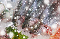 fresh fish on ice at grocery stall