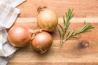 Fresh onion bulbs and rosemary branch.