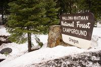 Wallowa Whitman National Forest Oregon Campground Sign USA