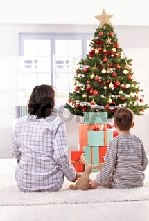 Mom and son looking at christmas tree