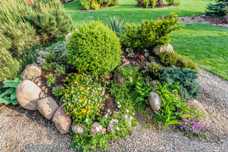 Landscaped summer garden with green plants, rocks, flowers in flowerbeds, mown grass.