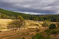 Valley in Tasmania