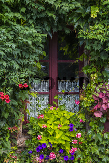 Window with Flowers, France