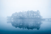 lake in fog