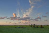 Abendhimmel über den Feldern Ostfrieslands