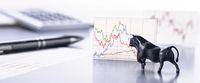 Bulle treibt die  Entwicklung von Börsenkursen