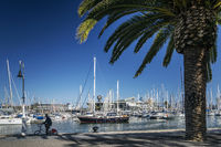 urban marina promenade in port vell area of barcelona spain