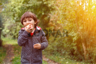 Kleiner Junge Kind Apfel Obst Früchte essen Textfreiraum Garten draußen Herbst Natur