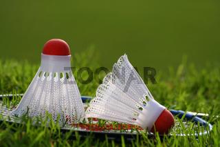 Badminton set on grass