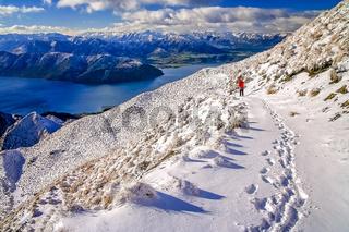Trekker on a trail