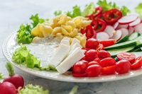 Vegetable salad with pasta and fresh cheese.