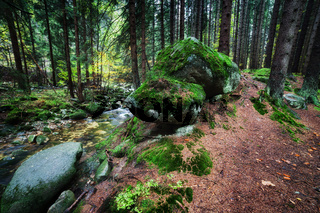 Mossy rocks at forest stream in Karkonosze Mountains