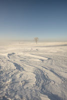 Winterlandschaft mit Schneeverwehungen