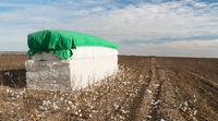 Bale of Cotton Farm Field West Texas Agriculture