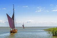 Zwei Zeesenboote auf dem Zingster Bodden an einem sonnigen Tag