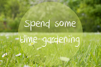 Gras Meadow, Daisy Flowers, Text Spend Some Time Gardening