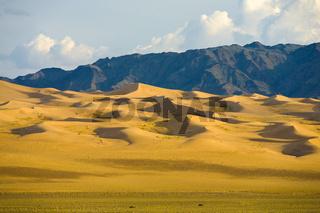 Khongor Els Sand Dune Gobi Desert Mongolia