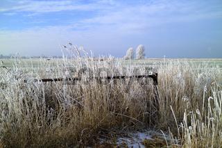 Frostige Landschaft