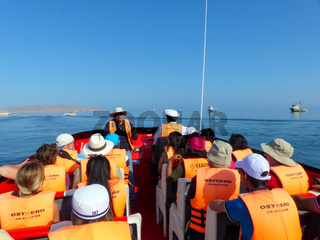 Tourists in a boat leaving for Ballestas Islands Reserve in Peru