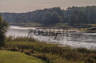 Morgenstunde an der  Elbe, Brambach, Sachsen-Anhalt, Deutschland