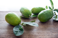 Fresg organic green lemons with leaves