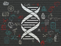 Science concept: DNA on wall background