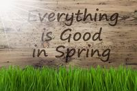 Sunny Wooden Background, Gras, Everything Is Good In Spring